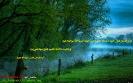 آیه های کتاب مقدس در مورد محبت_4